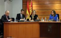 Elena de la Cruz comparece en la Comisión de Sostenibilidad de las Cortes