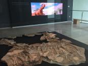 El renovado Museo de Paleontología ha recibido 47 reservas de centros educativos de Castilla-La Mancha, Madrid y la Comunidad Valenciana