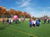 Unos 2.000 escolares de 70 colegios de la provincia de Toledo han participado en los siete 'Encuentros deportivos intercentros', organizados por el Gobierno regional