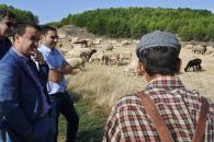 Un total de 3.500 agricultores y ganaderos en zonas de montaña y limitaciones naturales recibirán hoy más de 5,4 millones de euros en ayudas