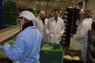 El Gobierno de Castilla-La Mancha colabora con las empresas del sector agroalimentario a través de las líneas FOCAL impulsando el desarrollo rural y las energías verdes
