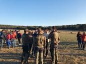 El Gobierno de Castilla-La Mancha liberará ocho linces ibéricos en los primeros meses de 2020 en las zonas de reintroducción, Sierra Morena Oriental y Montes de Toledo