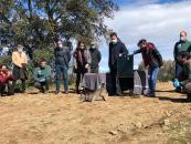 El Gobierno de Castilla-La Mancha realiza un balance positivo de la situación del 'lince ibérico' en la región con un total de 146 cachorros de la especie nacidos en libertad durante 2020