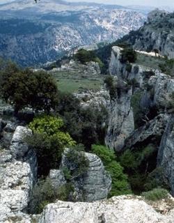 ZEC-ZEPA Sierra de Alcaraz y Segura y cañones del Segura y del Mundo
