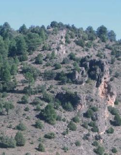 ZEC Campillos - Sierra y Valdemorillo de la Sierra