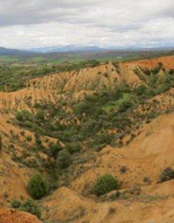 ZEC Rañas de Matarrubia, Villaseca y Casas de Uceda