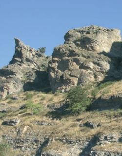 ZEC Valle del río Cañamares