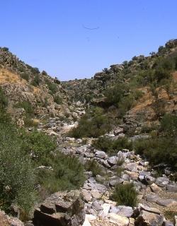 LIC-ZEPA Ríos de la margen izquierda del Tajo y berrocales del Tajo