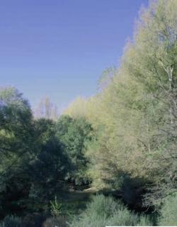 ZEC Riberas de Valfermoso de Tajuña y Brihuega