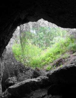ZEC Cueva de los Morciguillos