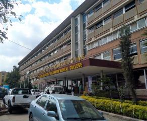 Una doctora del servicio de Medicina Intensiva del Hospital de Toledo participa en Etiopia en un programa de formación de especialistas