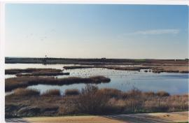 Plan de Conservación de Humedales
