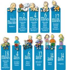 Vacunaciones en la etapa escolar (Sanitarios)