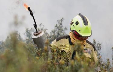 Taller Ecología del Fuego