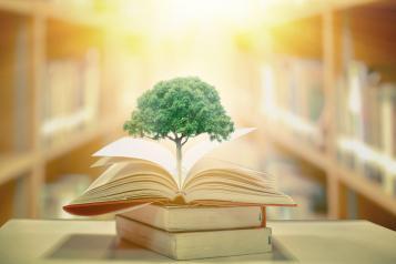 Proyecto de Decreto por el que se crea y regula la Comisión de Educación Ambiental de Castilla la Mancha