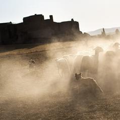 Plan de Artes Visuales de Castilla-La Mancha