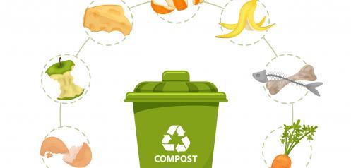 Decreto por el que se modifica el Decreto 19/2019 medidas desperdicio alimentario