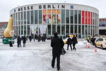 Un total de 12 empresas de la región tendrán presencia en Fruitlogística 2016, que se celebra en Berlín