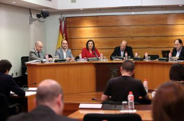 La consejera de Economía comparece en la Comisión de Presupuestos de Las Cortes