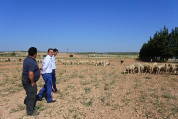 El Gobierno regional abona hoy 6,7 millones de planes de mejoras para las explotaciones de 200 profesionales de la agricultura y la ganadería