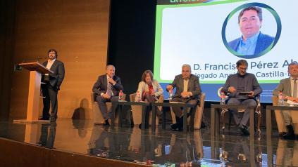 El Gobierno de Castilla-La Mancha apoya a los productores de energía fotovoltaica frente a los recortes sufridos