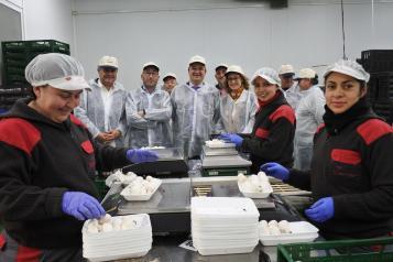 El consejero de Agricultura, Agua y Desarrollo Rural, Francisco Martínez Arroyo, visita las instalaciones de la empresa familiar Champiñones CUMAR