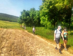 El Gobierno de Castilla-La Mancha celebra el Día Mundial del Medio Ambiente con numerosas rutas y actividades gratuitas abiertas al público en distintos espacios naturales de la región