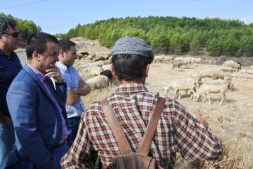 Este viernes se abonan cerca de 5 millones de euros en ayudas a agricultores y ganaderos, entre ellas, los más de 1,8 millones al pastoreo