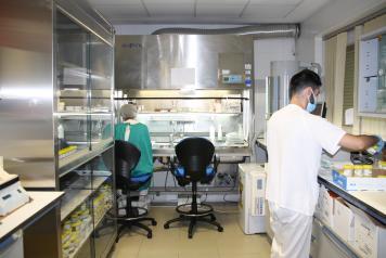 El Hospital de Cuenca culmina el proceso de renovación de la Sala de Procesamiento de Muestras del Servicio de Anatomía Patológica