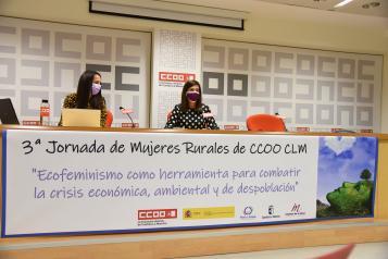 La directora del Instituto de la Mujer, Pilar Callado, presenta las jornadas online 'Ecofeminismo como herramienta para combatir la crisis económica, ambiental y de despoblación'