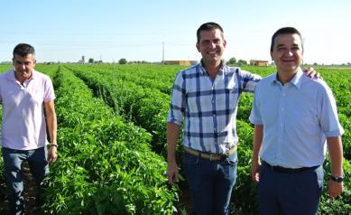 Castilla-La Mancha ha abonado ya cerca de 113 millones de euros para garantizar el relevo generacional en el campo y su modernización