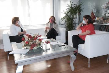Rosa Ana Rodríguez mantiene una reunión telemática con directores de centros educativos y representantes de AMPAS de Ciudad Real
