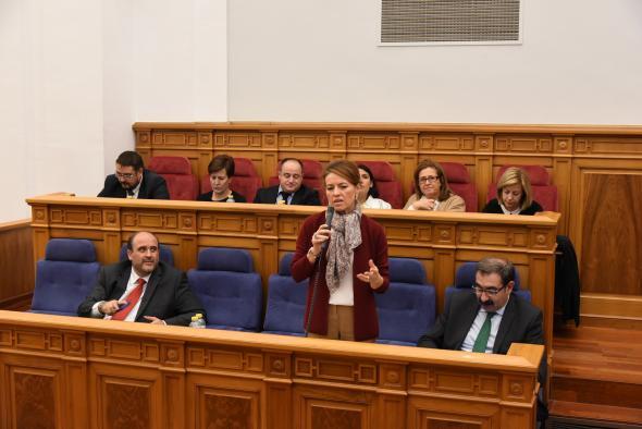 La consejera de Bienestar Social durante su intervención en las Cortes
