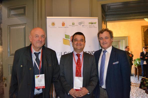 Castilla-La Mancha finaliza el año vitícola con 33,8 millones abonados en la reestructuración de 7.539 hectáreas de viñedo