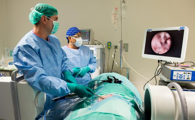 La Unidad de Cirugía Experimental del Hospital Nacional de Parapléjicos acoge un curso de cirugía endoscópica de la columna vertebral