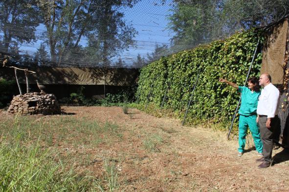 El Gobierno de Castilla-La Mancha destaca el trabajo realizado por el personal del Centro de Investigación Agroambiental El Chaparrillo