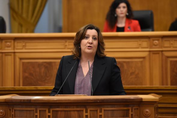 La consejera de Economía, Empresas y Empleo interviene en el pleno de las Cortes regionales