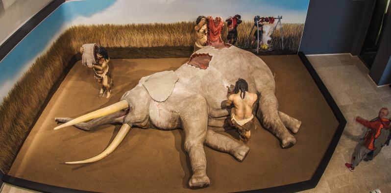 Los museos gestionados por la Junta reabren hoy sus puertas con acceso libre hasta final de año y reforzando las visitas no presenciales