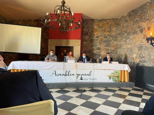 Castilla-La Mancha abona este viernes más de 3 millones de euros de reestructuración de viñedo de los que se beneficiarán 372 viticultores